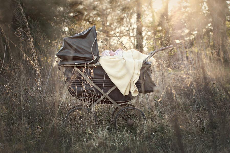 Newborn Carriage